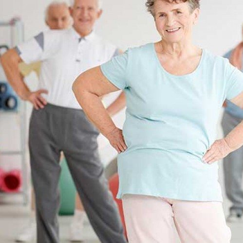 Healthy Hobbies for Seniors | Blog | Bridge to Better Living