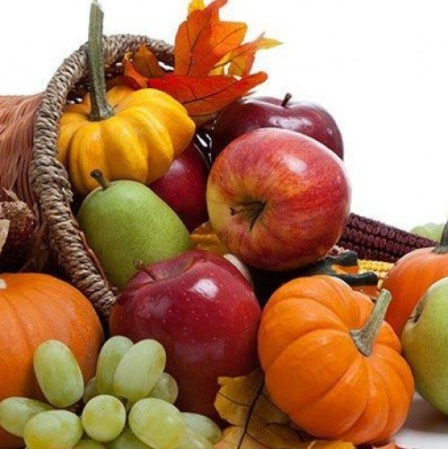 The Cornucopia Shake | Guidance Corner | Bridge to Better Living